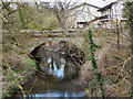 SJ8182 : River Bollin, Oversleyford Bridge by David Dixon