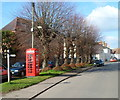 SO7407 : Phonebox and line of trees, The Street, Frampton on Severn  by John Grayson