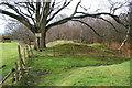 SD6428 : Former quarry workings above Pleasington by Bill Boaden