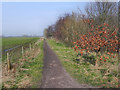 SJ7691 : Trans Pennine Trail by David Dixon