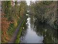 SJ6887 : Bridgewater Canal at Lymm by David Dixon