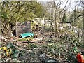 SJ9494 : Abandoned Allotment by Gerald England