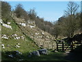 SK1666 : Lathkill Dale view by Andrew Hill