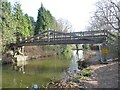 SU8954 : Footbridge across the Basingstoke Canal by Christine Johnstone