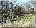 SJ9595 : Godley Footpath by Gerald England
