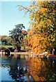 SO9975 : Lickey Hills, Autumn Colours 1993 by Roy Hughes