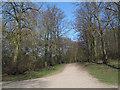 TQ2586 : Sandy Road (2) by Stephen Craven
