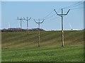NS8454 : Electricity poles near Watsonhead farm by wrobison