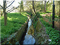 Dist:0.3km<br/>This is just upstream of what is labelled as Bow Lane Screen, where the stream becomes culverted. It looks as if it may eventually feed into Pyl Brook.