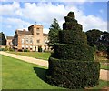 SP5750 : Spiral Bush at Canons Ashby House by Des Blenkinsopp