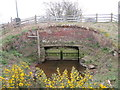 NY2859 : Sluice gates near to Boustead Hill by Ian S