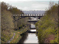SK3788 : Bridges Over The Sheffield and Tinsley Canal by David Dixon