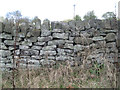 SK3089 : Powdery lichen on a stone wall, Black Lane by Robin Stott