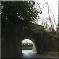 SX5084 : Bridge for former LSWR railway line near Lydford by David Smith