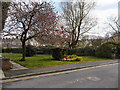 SD7933 : Padiham Centenary Garden by David Dixon
