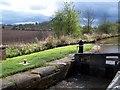 SJ5344 : Povey's Lock, Llangollen Canal by David Martin