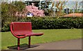 C8432 : Park bench, Coleraine (1) by Albert Bridge