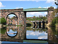 SJ6573 : Northwich - Hunts Weir framed by railway viaduct : Week 16