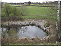 TQ0646 : Pond Below Ponds Farm by Colin Smith