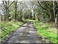 NZ1544 : Lane on the southern edge of Ragpathside Plantation by Christine Johnstone