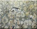 NM3899 : Spherulites by Anne Burgess