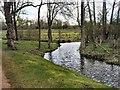 SP5105 : Stream by Christ Church meadow by Paul Gillett