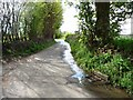 SE2316 : Water running down Denby Lane by Christine Johnstone