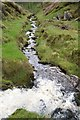 SK0173 : Meeting of streams near Goyt's Clough quarries by Neil Theasby