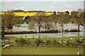 SK9800 : River Welland in flood by Richard Croft