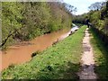 SK5082 : Chesterfield Canal at Kiveton Park  by Graham Hogg