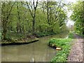 SK5282 : Narrows on the Chesterfield Canal  by Graham Hogg