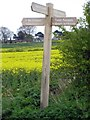 SE4317 : Walkers signpost by Mike Kirby
