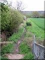 SP9135 : Bridleway to Aspley Heath from Old Farm Park by Philip Jeffrey