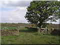 SE2206 : Bridleway towards Upper Denby by John Slater