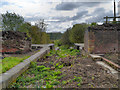 SD7506 : Manchester, Bolton and Bury Canal, Disused Locks at Nob End by David Dixon