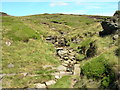 SK0599 : Looking up Hollins Clough by John Topping