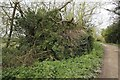 SU2598 : Back towards the manor by Bill Nicholls