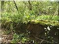 SE2406 : Benchmark on an old bridge near Gunthwaite Dam by John Slater
