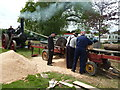 SX9891 : Devon County Show - sawing by steam by Chris Allen