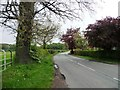 SJ7874 : Stocks Lane at Fourlane-ends by Christine Johnstone