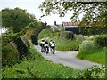 SJ7871 : Cyclists approaching Roadside Farm, Buckden Lane by Christine Johnstone