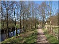 SE1665 : Path by the River Nidd by Derek Harper