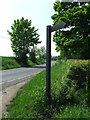 TL8444 : Footpath Sign by Keith Evans