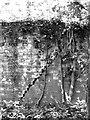 TM3094 : Zig-zagging crack by Evelyn Simak