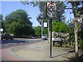 TQ3272 : Thurlow Park Road at the junction of Dalmore Road by David Howard