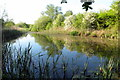 SP7835 : Small lake by the School Furze by Philip Jeffrey