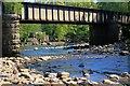 NY9839 : Weardale Railway Bridge : Week 22