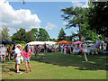 SP9911 : Stalls on a lawn in the Ashridge House Gardens by Chris Reynolds