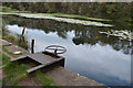 NU2517 : Sluice at the outflow from the lake at Howick Hall Gardens by Phil Champion
