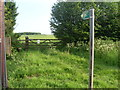 SP9101 : Public Footpath Sign in Chesham Road (B485) by David Hillas